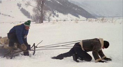 rocky-sled