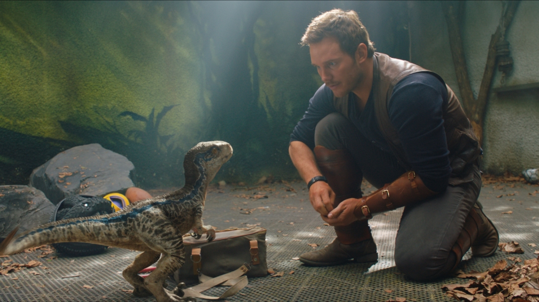jurassic-world-2-fallen-kingdom-blue-owen